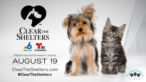 Clear the Shelters Day 8-19-17