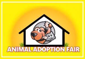 7TH ANNUAL ANIMAL ADOPTION FAIR @ WAR MEMORIAL AUDITORIUM | Fort Lauderdale | Florida | United States