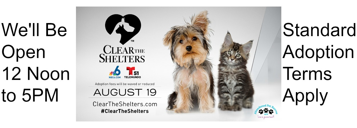 MARQUEE CLEAR THE SHELTERS 2017