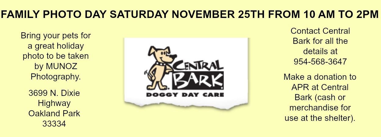 CENTRAL BARK MARQUEE