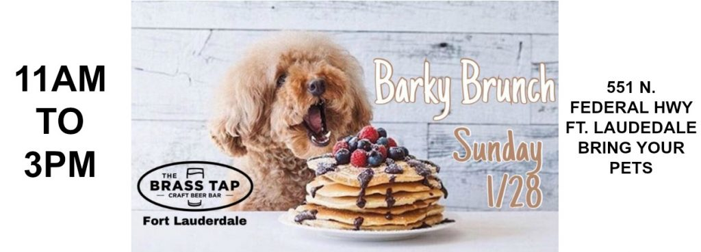 BARKY BRUNCH 1/28/18 @ THE BRASS TAP | Fort Lauderdale | Florida | United States