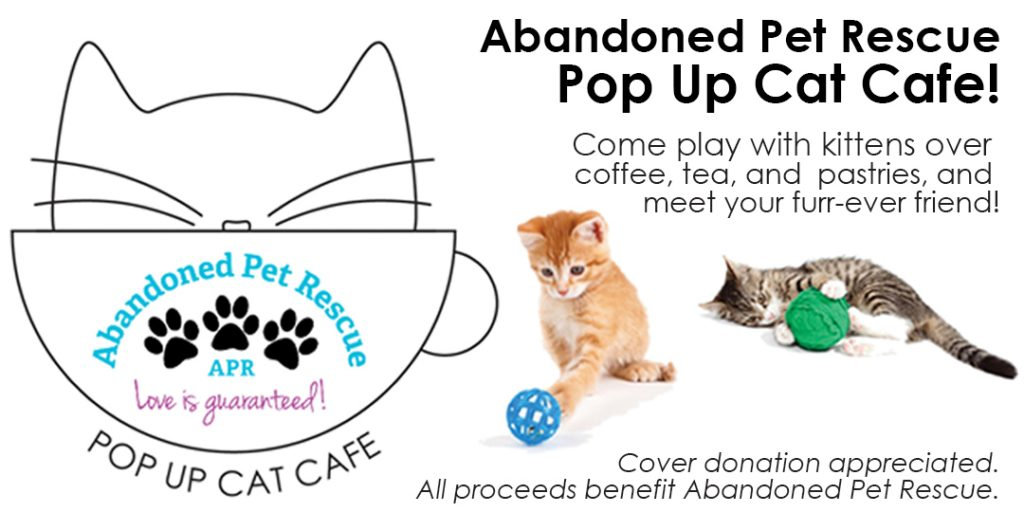 POP-UP CAT CAFE 3/25/18 @ Blanco Y Blanco Arts | Fort Lauderdale | Florida | United States
