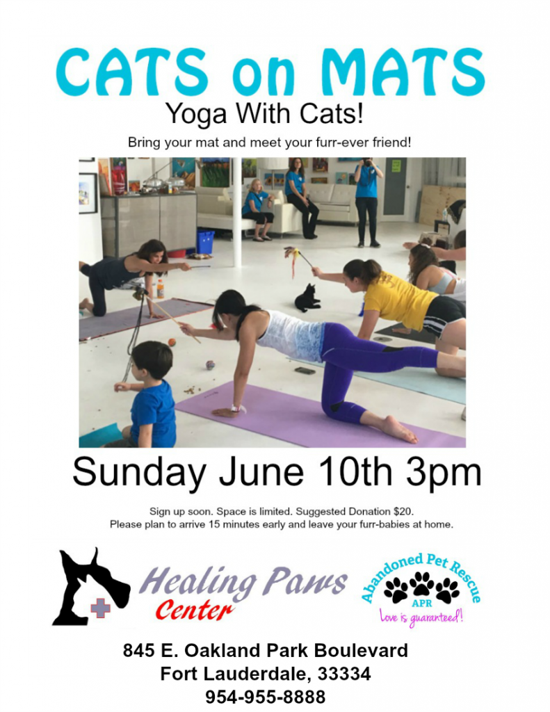 CATS ON MATS 6/10/18 @ Healing Paws Center   Oakland Park   Florida   United States