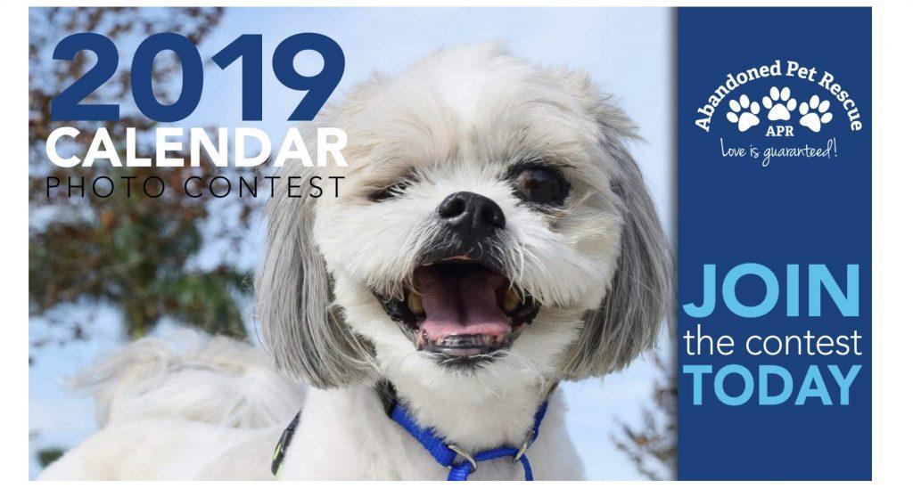 2019 APR CALENDAR CONTEST