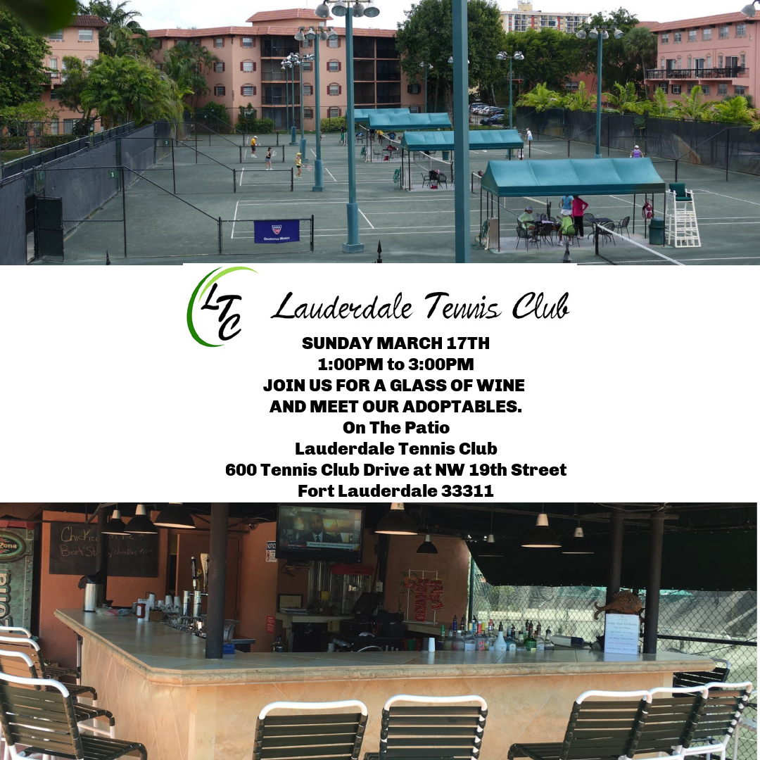 WINE, ADOPTABLES, AND TENNIS 3/17/19 @ Lauderdale Tennis Club | Fort Lauderdale | Florida | United States