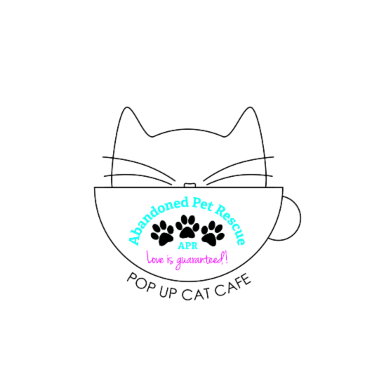 Pop Up Cat Cafe (10/5/19) @ Blanco Y Blanco Arts | Fort Lauderdale | Florida | United States