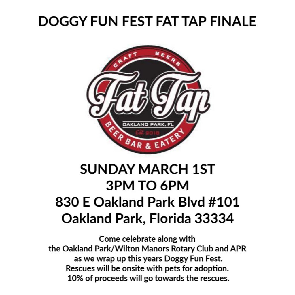 DOGGY FUN FEST FAT TAP FINALE @ FAT TAP | Oakland Park | Florida | United States