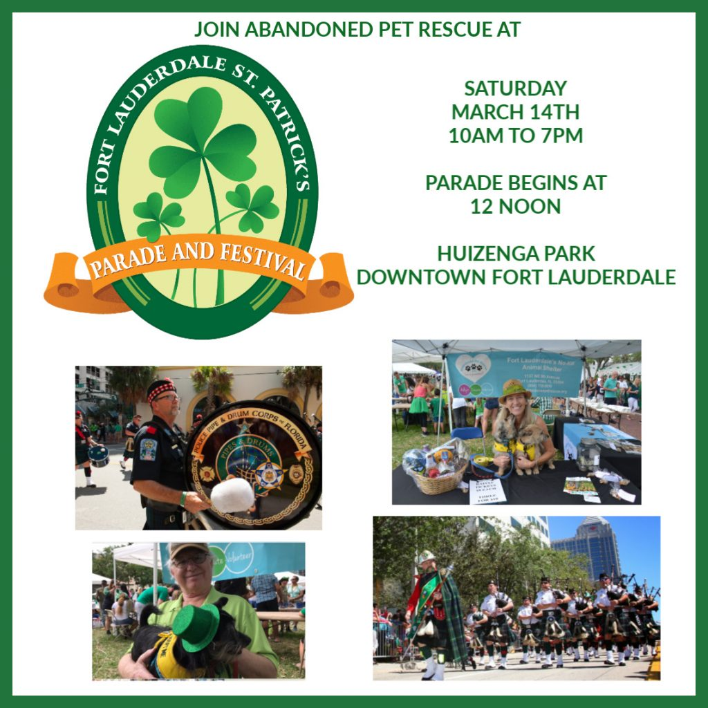ST. PATRICK'S FESTIVAL AND PARADE @ HUIZENGA PARK | Fort Lauderdale | Florida | United States