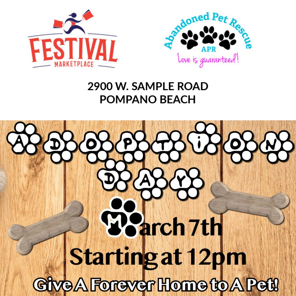 FESTIVAL MARKETPLACE ADOPTION EVENT @ FESTIVAL MARKETPLACE | Pompano Beach | Florida | United States